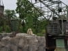 20130516_zoo-besuch-14