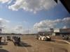 20120416_BW-Flughafen-115