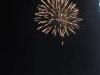 2015_Kleines Fest im großen Garten (206)