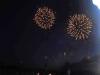 2015_Kleines Fest im großen Garten (216)