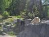k-014.08.2012_Zoo-04