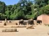 k-014.08.2012_Zoo-41