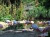k-014.08.2012_Zoo-49